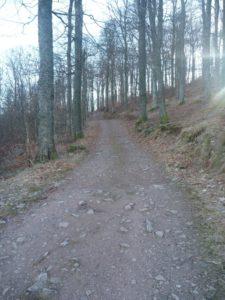 Refuge Molkenrain chemin acces 062