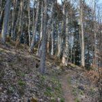 Refuge du Molkenrain amis de la nature 096